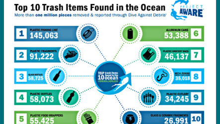 Состав морского мусора